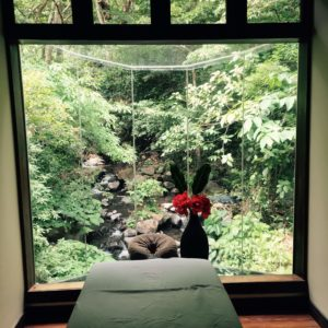 Massage room with a view